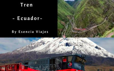 Recorridos en tren por Sudamérica II